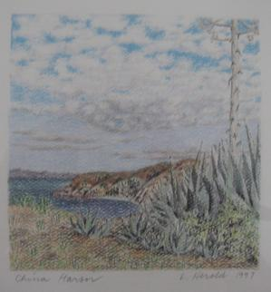 Santa Cruz Island Drawing