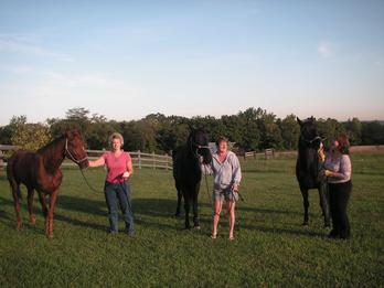 Our guests and their horses